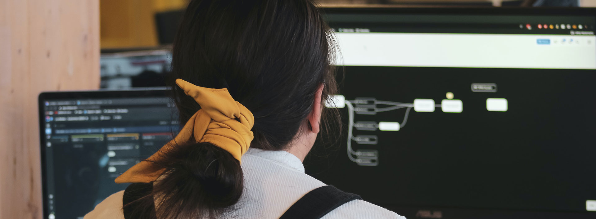 Photo of a woman looking at a flow chart on a computer screen.