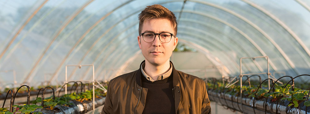 Photo of a man standing in a greenhouse in the early morning sun.